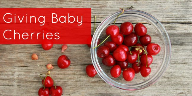 giving-baby-cherries