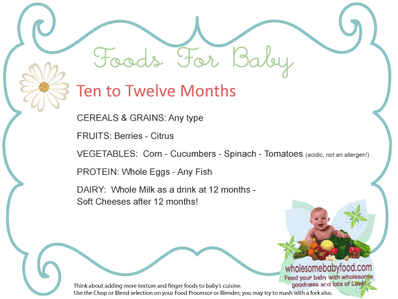 Introducing Solids To Your 10 Month To 12 Month Old Baby